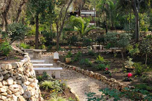 One area of the garden Tomb gardens